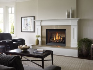 The Leader in Gas Fireplaces